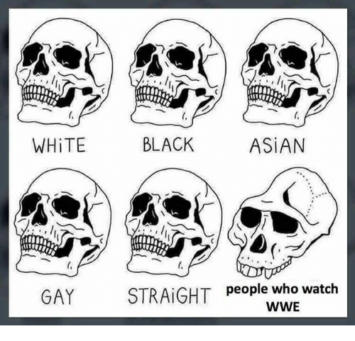 Asian, Memes, and World Wrestling Entertainment: 010  WHiTE  BLACK  ASiAN  GAY  people who watch  WWE
