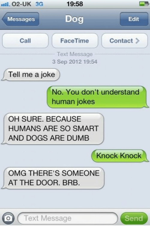 Jokes: 02-UK 3G  19:58  Messages  Dog  Edit  Call  FaceTime  Contact  Text Message  3 Sep 2012 19:54  Tell me a joke  No. You don't understand  human jokes  OH SURE. BECAUSE  HUMANS ARE SO SMART  AND DOGS ARE DUMB  Knock Knock  OMG THERE'S SOMEONE  AT THE DOOR. BRB.  O Text Message  Send