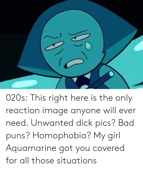 Bad Puns: 020s:  This right here is the only reaction image anyone will ever need. Unwanted dick pics? Bad puns? Homophobia? My girl Aquamarine got you covered for all those situations