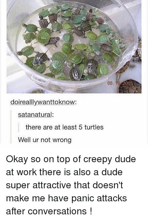 Creepy, Dude, and Ironic: 08.  2005  doireallywanttoknow:  satanatural:  there are at least 5 turtles  Well ur not wrong Okay so on top of creepy dude at work there is also a dude super attractive that doesn't make me have panic attacks after conversations !