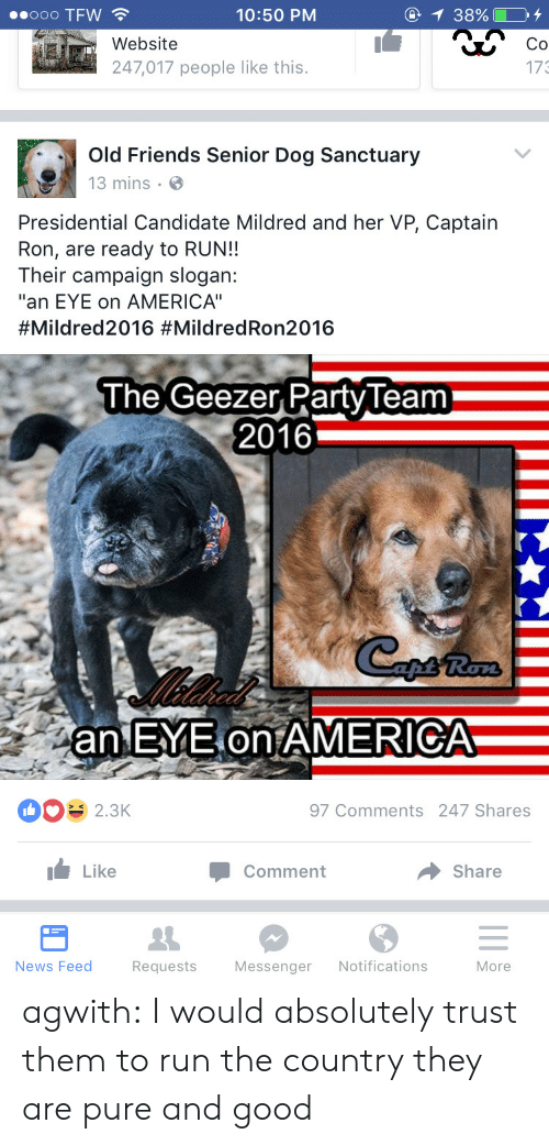 "geezer: 0o0 TFW  @  1 38% O  10:50 PM  Website  Co  247,017 people like this.  173  Old Friends Senior Dog Sanctuary  13 mins  Presidential Candidate Mildred and her VP, Captain  Ron, are ready to RUN!!  Their campaign slogan:  ""an EYE on AMERICA""  #Mildred2016 #MildredRon2016  The  Geezer Party Team  2016  an EYE on AMERICA  97 Comments 247 Shares  2.3K  Like  Share  Comment  News Feed  Notifications  Requests  Messenger  More agwith:  I would absolutely trust them to run the country they are pure and good"