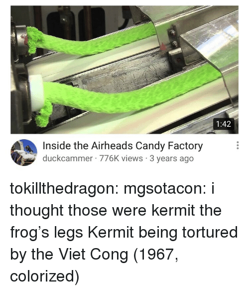 Kermit the Frog: 1:42  Inside the Airheads Candy Factory  duckcammer 776K views 3 years ago tokillthedragon:  mgsotacon: i thought those were kermit the frog's legs  Kermit being tortured by the Viet Cong (1967, colorized)