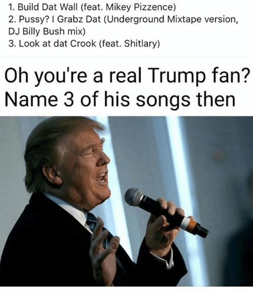 crook: 1. Build Dat Wall (feat. Mikey Pizzence)  2. Pussy? I Grabz Dat (Underground Mixtape version,  DJ Billy Bush mix)  3. Look at dat Crook (feat. ary)  Oh you're a real Trump fan?  Name 3 of his songs then