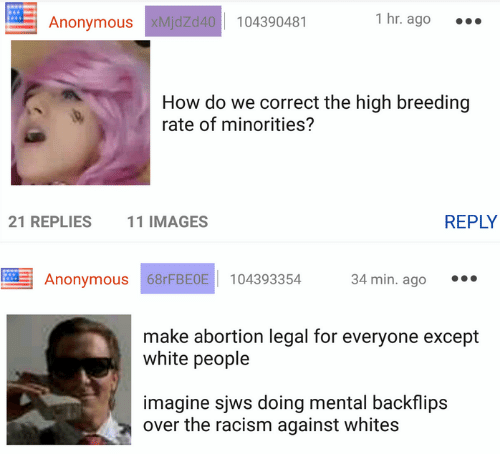 4chan, Racism, and White People: 1 hr. ago  104390481  Anonymous  xMjdZd40  How do we correct the high breeding  rate of minorities?  REPLY  21 REPLIES  11 IMAGES  Anonymous 68r FBE0E 104393354  34 min. ago  make abortion legal for everyone except  white people  imagine sjws doing mental backflips  over the racism against whites