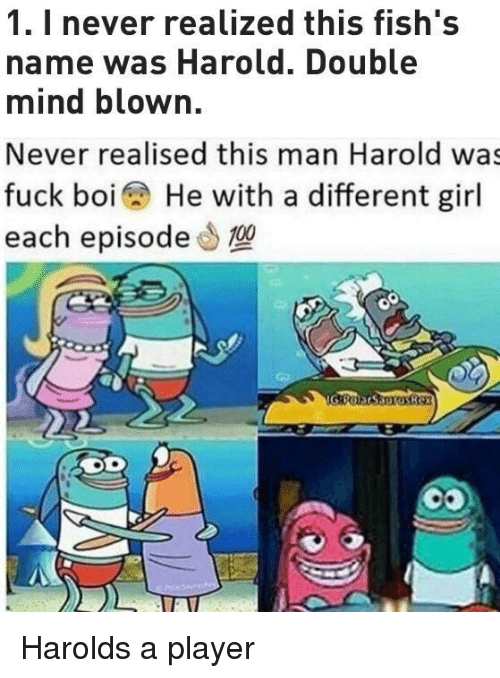 mind blown: 1. I never realized this fish's  name was Harold. Double  mind blown.  Never realised this man Harold was  fuck boi He with a different girl  each episode0 Harolds a player