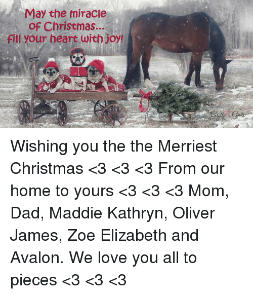 Zoe: 1 May the miracle  of Christmas...  fill your heart with joy! Wishing you the the Merriest Christmas <3 <3 <3 From our home to yours <3 <3 <3 Mom, Dad, Maddie Kathryn, Oliver James, Zoe Elizabeth and Avalon. We love you all to pieces <3 <3 <3