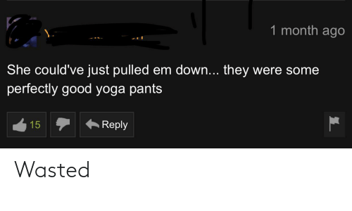 Yoga Pants: 1 month ago  She could've just pulled em down... they were some  perfectly good yoga pants  Reply  15 Wasted