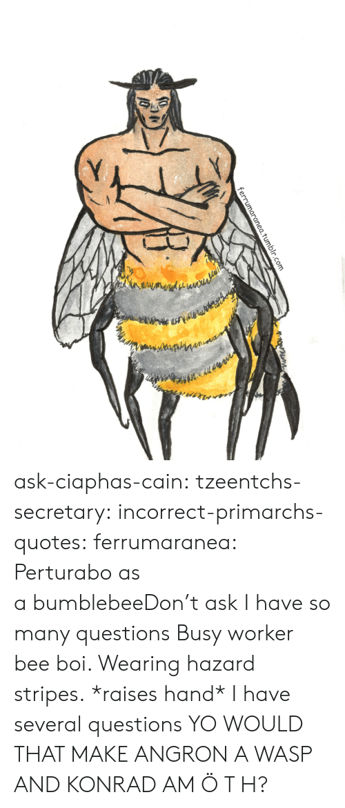 wasp: 1.tumblr.com ask-ciaphas-cain:  tzeentchs-secretary:  incorrect-primarchs-quotes:  ferrumaranea:  Perturabo as abumblebeeDon't ask  I have so many questions   Busy worker bee boi. Wearing hazard stripes.  *raises hand* I have several questions  YO WOULD THAT MAKE ANGRON A WASP AND KONRAD AM Ö T H?