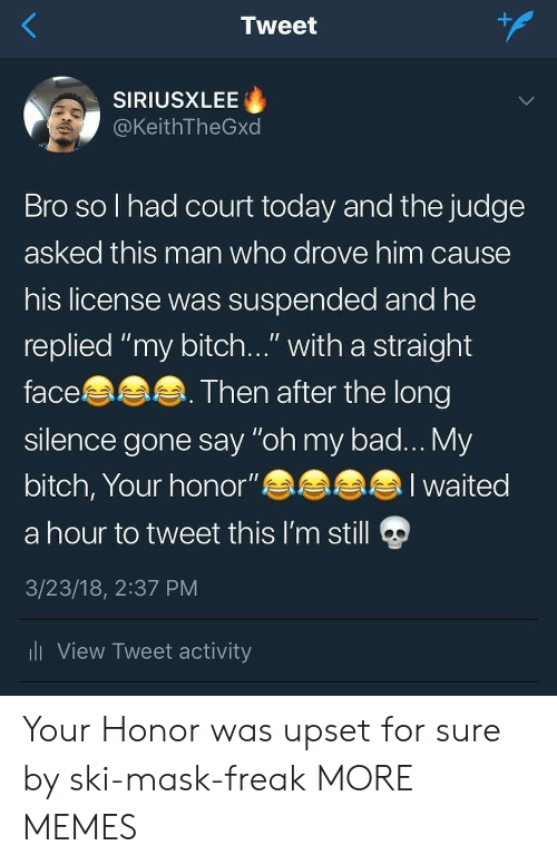 """My Bitch: 1  Tweet  SIRIUSXLEE  @KeithTheGxd  Bro so l had court today and the judge  asked this man who drove him cause  his license was suspended and he  replied """"my bitch..."""" with a straight  face  silence gone say """"oh my bad... My  bitch, Your honor""""eaa  a hour to tweet this I'm still  3/23/18, 2:37 PM  li View Tweet activity  Then after the long  alI waited Your Honor was upset for sure by ski-mask-freak MORE MEMES"""