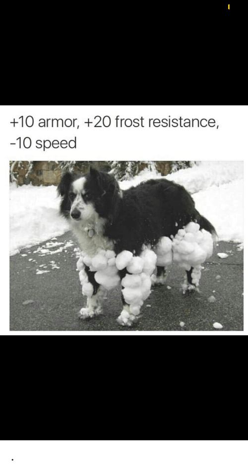 resistance: +10 armor, +20 frost resistance,  -10 speed .