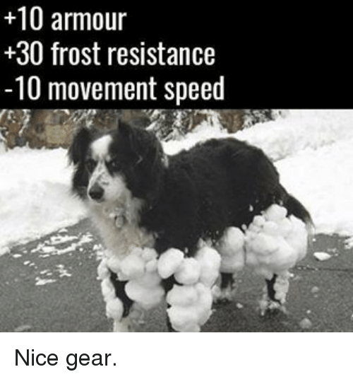 frosting: +10 armour  30 frost resistance  -10 movement speed Nice gear.