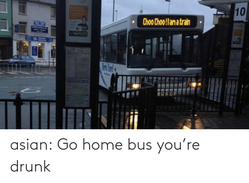 Asian: 10  Choo Choo!lam a train asian:  Go home bus you're drunk