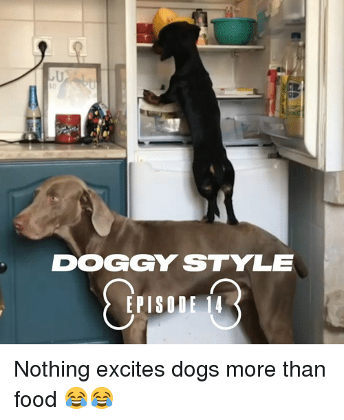 doggy style: 10  DOGGY STYLE  EPISODE 14 Nothing excites dogs more than food 😂😂