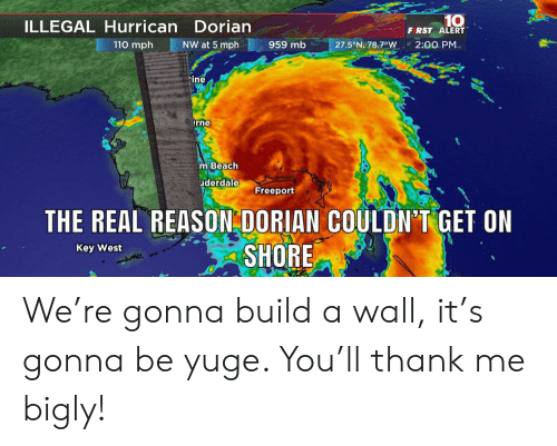 Bigly: 10  F RST ALERT  ILLEGAL Hurrican Dorian  110 mph  NW at 5 mph  959 mb  2:00 PM  27.5°N, 78.7°W  ine  rne  m Beach  uderdale  Freeport  THE REAL REASON DORIAN COULDN'T GET ON  SHORE  Key West We're gonna build a wall, it's gonna be yuge. You'll thank me bigly!