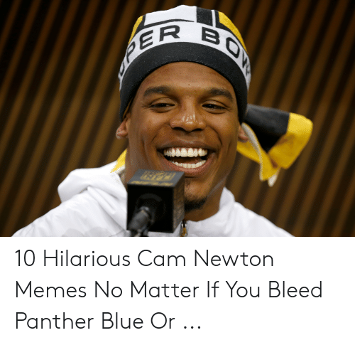 Cam Newton Memes: 10 Hilarious Cam Newton Memes No Matter If You Bleed Panther Blue Or ...