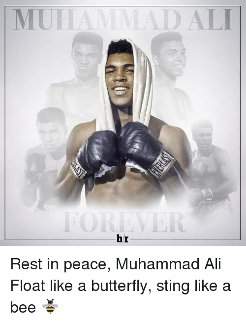 sting like a bee: 10  ITV ( IVI  H[IN | Rest in peace, Muhammad Ali Float like a butterfly, sting like a bee 🐝