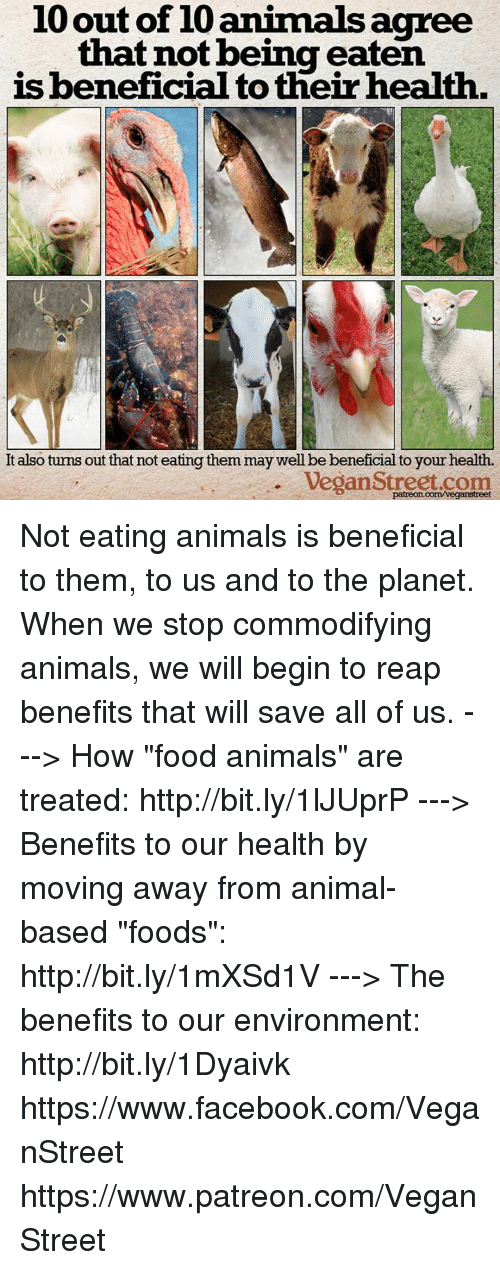 "Animals, Facebook, and Food: 10 out of 10 animals agree  that not being eaten  is beneficial to their health.  It also turns out that not eating them may well be beneficial to your health.  Vegan Street.com  patreon.com/veganstreet Not eating animals is beneficial to them, to us and to the planet. When we stop commodifying animals, we will begin to reap benefits that will save all of us.  ---> How ""food animals"" are treated: http://bit.ly/1lJUprP ---> Benefits to our health by moving away from animal-based ""foods"": http://bit.ly/1mXSd1V ---> The benefits to our environment: http://bit.ly/1Dyaivk  https://www.facebook.com/VeganStreet https://www.patreon.com/VeganStreet"