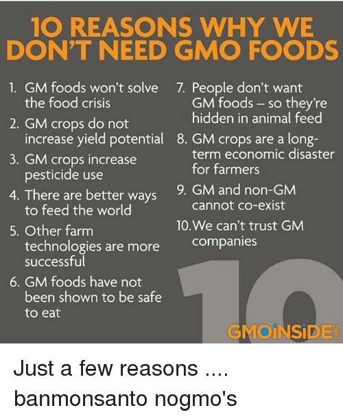 are genetically modified foods safe to