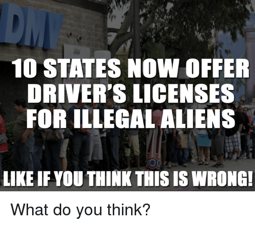 Memes, 🤖, and Driver: 10 STATES NOW OFFER  DRIVER'S LICENSES  FOR ILLEGAL ALIENS  LIKE IF YOU THINKTHIS IS WRONG! What do you think?
