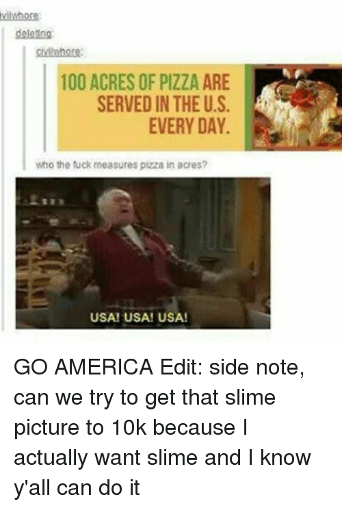 Memes, 🤖, and Usa: 100 ACRES OF PIZZA ARE  SERVED IN THE US.  EVERY DAY.  who the fuck measures pizza in acres?  USA! USA! USA! GO AMERICA Edit: side note, can we try to get that slime picture to 10k because I actually want slime and I know y'all can do it
