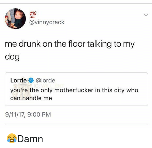 9/11, Anaconda, and Drunk: 100  @vinnycrack  me drunk on the floor talking to my  dog  Lorde @lorde  you're the only motherfucker in this city who  can handle me  9/11/17, 9:00 PM 😂Damn