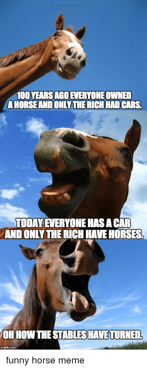 Horse Meme: 100 YEARS AGOEVERYONE OWNED  A HORSE AND ONLY THE RICH HAD CARS  TODAY EVERYONE HAS A CAR  AND ONLYTHE RICH HAVE HORSES  OH HOW THE STABLES HAVE TURNED,  imgflip.com funny horse meme