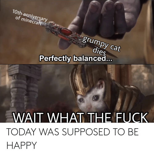 Grumpy Cat: 10th-anniversary,  of minecraft  grumpy cat  dies  Perfectly balanced  WAIT WHAT THE FUCK TODAY WAS SUPPOSED TO BE HAPPY