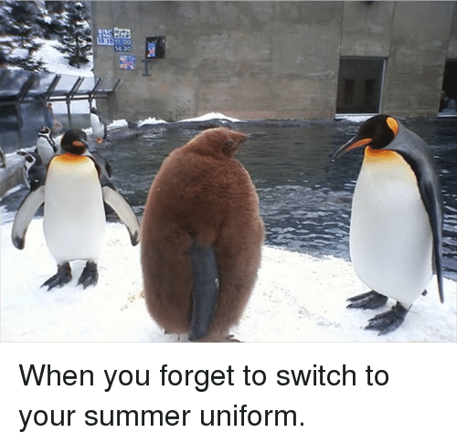 Dank, Summer, and 🤖: 11:00 When you forget to switch to your summer uniform.