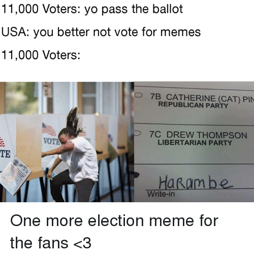 Election Memes: 11,000 Voters  yo pass the ballot  USA: you better not vote for memes  11,000 Voters:  O 7B CATHERINE (CAT) PIN  REPUBLICAN PAR  P 7C DREW THOMPSON  LIBERTARIAN PARTY  TE  Ha Ram be  Write-in One more election meme for the fans <3