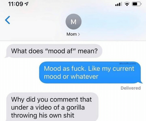 "Current Mood: 11:09  Mom  What does ""mood af"" mean?  heckofup  Mood as fuck. Like my current  mood or whatever  Delivered  Why did you comment that  under a video of a gorilla  throwing his own shit  M"
