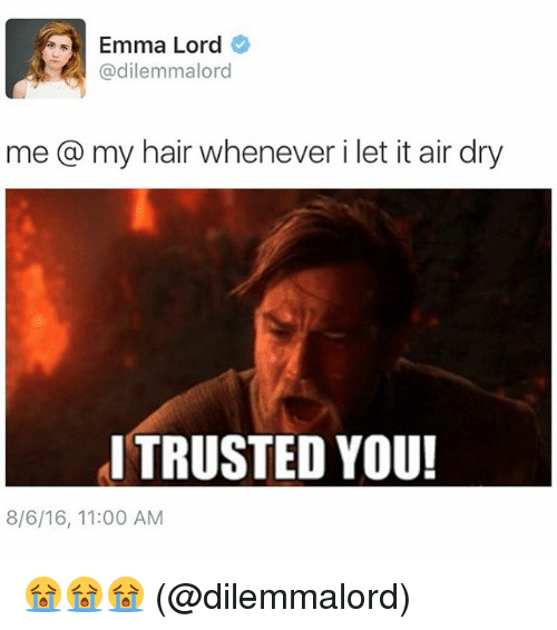 memes: 11 Emma Lord  @dilemmalord  me @ my hair whenever i let it air dry  I TRUSTED YOU!  8/6/16, 11:00 AM 😭😭😭 (@dilemmalord)