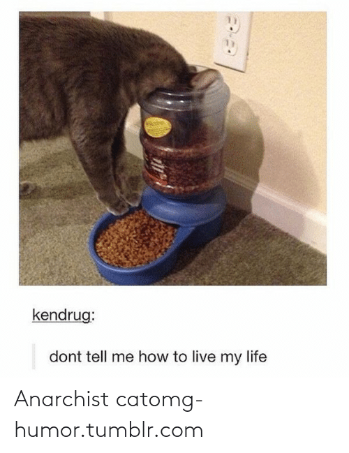Dont Tell Me How To Live My Life: 11  kendrug:  dont tell me how to live my life Anarchist catomg-humor.tumblr.com