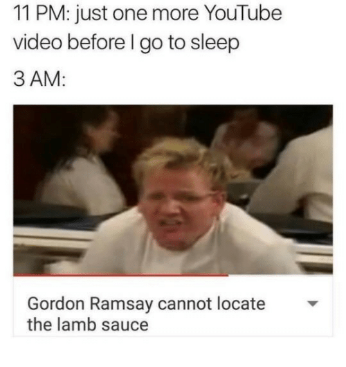 Lamb Sauce: 11 PM: just one more YouTube  video before l go to sleep  3 AM:  Gordon Ramsay cannot locate  the lamb sauce