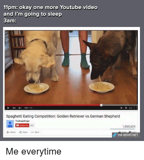 youtubed: 11pm: okay one more Youtube video  and I'm going to sleep  3am:  1:57  /241  Spaghetti Eating Competition: Golden Retriever vs German Shepherd  TheBragdBirger  Subscribe  1,860,624  Add to  dP VIA 8SHIT NET Me everytime