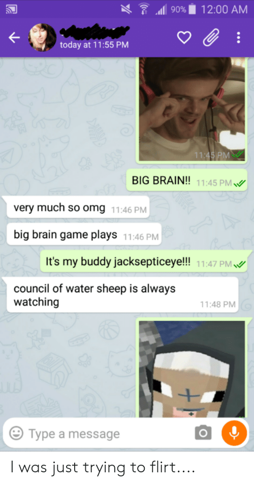 trying to flirt: 12:00 AM  90%  today at 11:55 PM  11:45 PM  BIG BRAIN!! 11:45 PM  very much so omg 11:46 PM  big brain game plays  11:46 PM  It's my buddy jacksepticeye!!! 11:47 PM  council of water sheep is always  watching  11:48 PM  Type a message  O I was just trying to flirt....