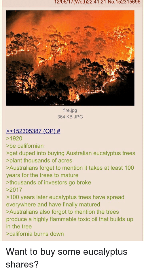 Anaconda, Fire, and California: 12/06/17(Wed)22:41:21 No.152315696  fire.jpg  364 KB JPG  2152305387 (OP) #  1920  >be californian  get duped into buying Australian eucalyptus trees  >plant thousands of acres  Australians forget to mention it takes at least 100  years for the trees to mature  thousands of investors go broke  2017  >100 years later eucalyptus trees have spread  everywhere and have finally matured  Australians also forgot to mention the trees  produce a highly flammable toxic oil that builds up  in the tree  california burns down