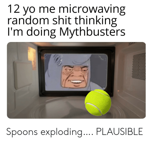 spoons: 12 yo me microwaving  random shit thinking  I'm doing Mythbusters  ww Spoons exploding…. PLAUSIBLE