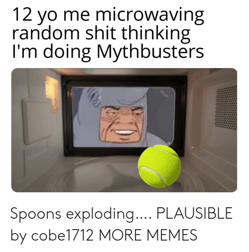 spoons: 12 yo me microwaving  random shit thinking  I'm doing Mythbusters  ww Spoons exploding…. PLAUSIBLE by cobe1712 MORE MEMES