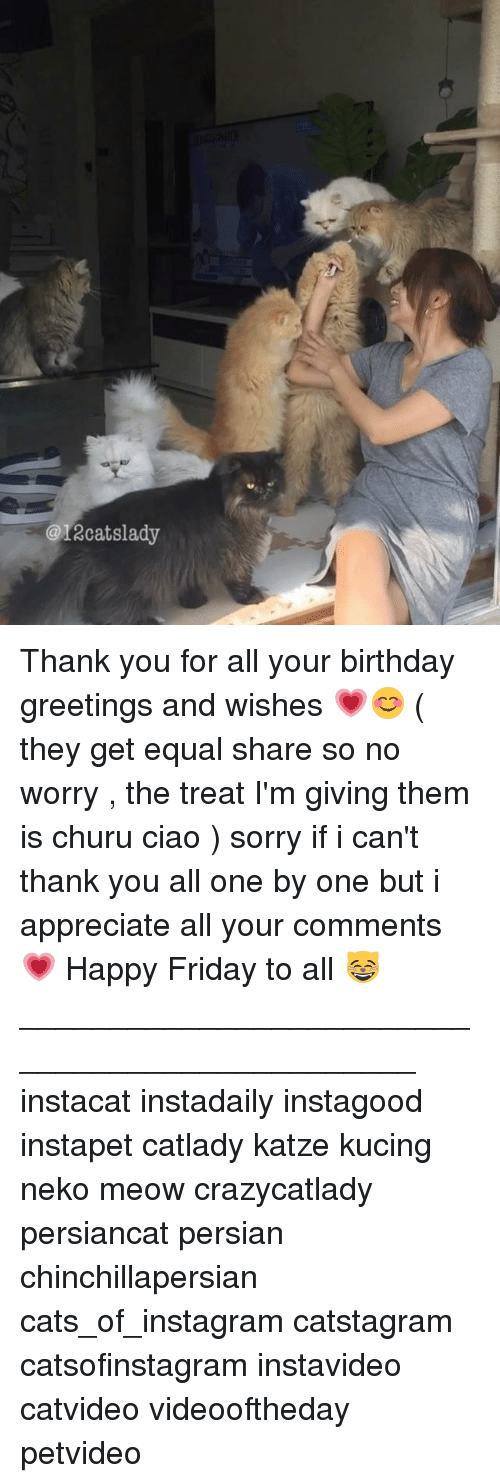 Birthday, Cats, and Friday: @12cat slady Thank you for all your birthday greetings and wishes 💗😊 ( they get equal share so no worry , the treat I'm giving them is churu ciao ) sorry if i can't thank you all one by one but i appreciate all your comments 💗 Happy Friday to all 😸_______________________________________________ instacat instadaily instagood instapet catlady katze kucing neko meow crazycatlady persiancat persian chinchillapersian cats_of_instagram catstagram catsofinstagram instavideo catvideo videooftheday petvideo