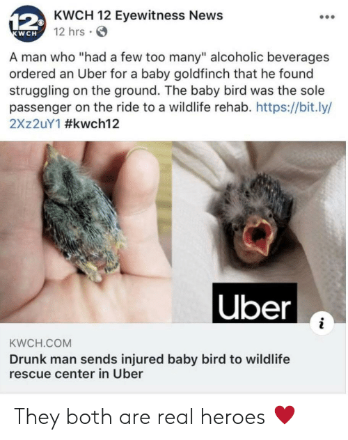 """Alcoholic: 12KWCH 12 Eyewitness News  12 hrs  KWCH  A man who """"had a few too many"""" alcoholic beverages  ordered an Uber for a baby goldfinch that he found  struggling on the ground. The baby bird was the sole  passenger on the ride to a wildlife rehab. https://bit.ly/  2X 2UY1 #kwch12  
