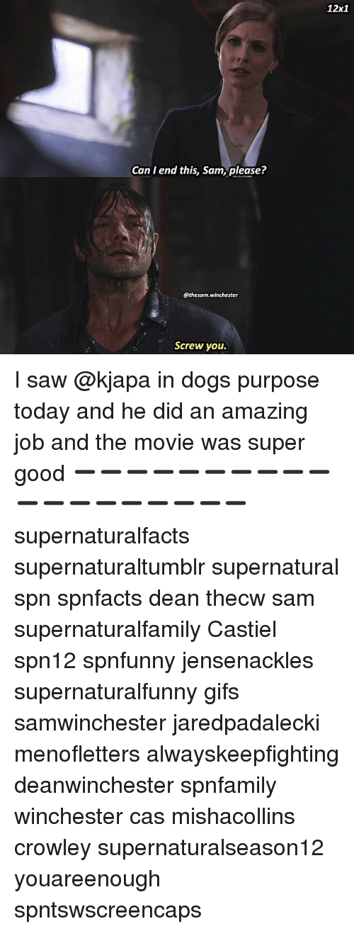 Dogs, Memes, and Saw: 12x1  Can I end this, Sam, please?  @thesam.winchester  Screw you I saw @kjapa in dogs purpose today and he did an amazing job and the movie was super good ➖➖➖➖➖➖➖➖➖➖➖➖➖➖➖➖➖➖➖ supernaturalfacts supernaturaltumblr supernatural spn spnfacts dean thecw sam supernaturalfamily Castiel spn12 spnfunny jensenackles supernaturalfunny gifs samwinchester jaredpadalecki menofletters alwayskeepfighting deanwinchester spnfamily winchester cas mishacollins crowley supernaturalseason12 youareenough spntswscreencaps