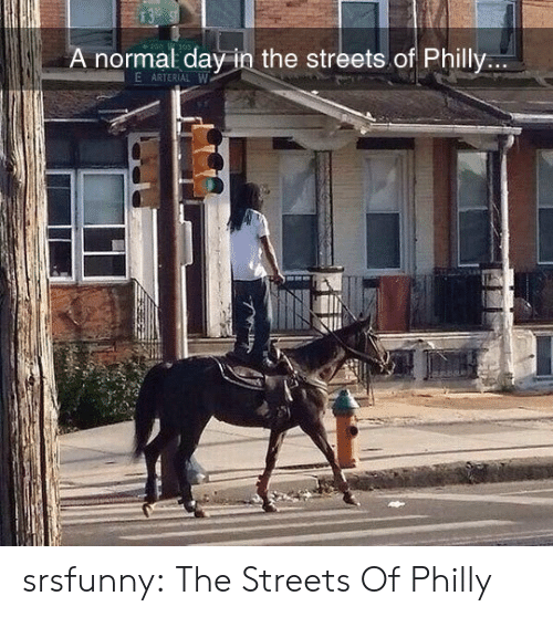philly: 13  A normal day in the streets.of Philly...  E ARTERIAL W srsfunny:  The Streets Of Philly