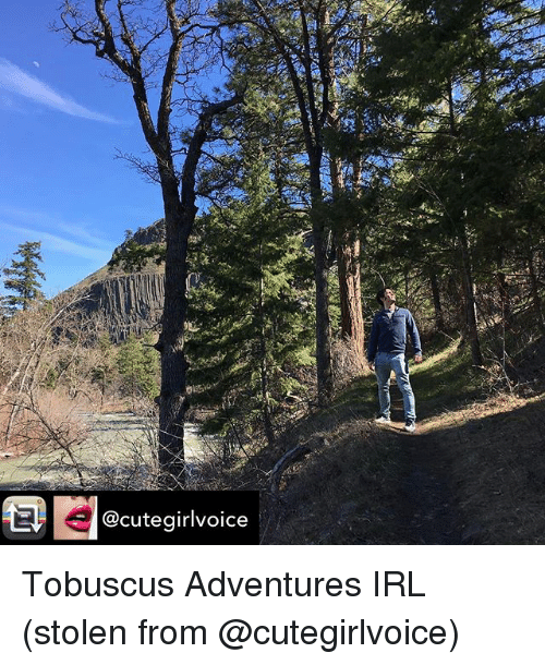 Cute, Memes, and Irl: 14 e  @cute girlvoice Tobuscus Adventures IRL (stolen from @cutegirlvoice)
