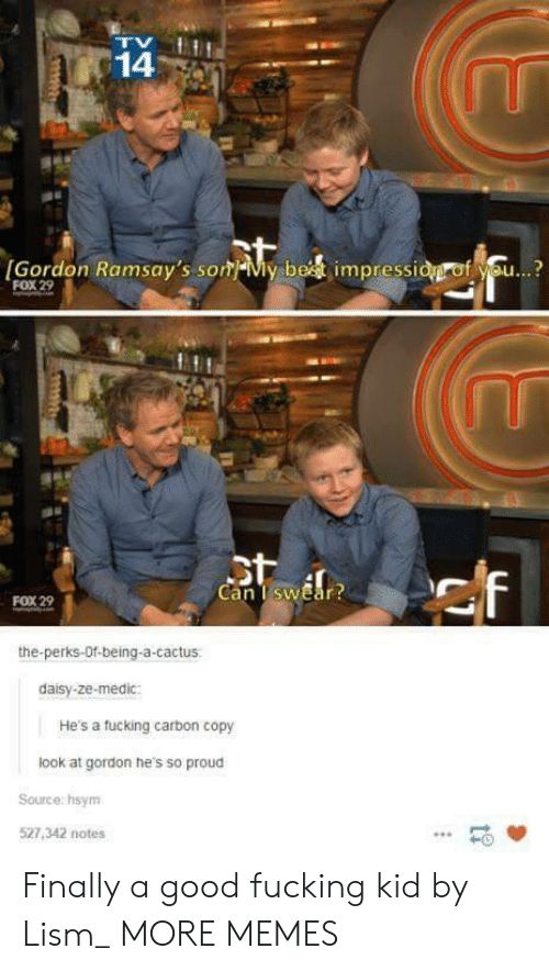 som: 14  [Gordon Ramsay's som-My be  impressi  f se..?  FOX 29  Can TswEar  FOX 29  the-perks-Of-being-a-cactus  daisy-ze-medic:  He's a tucking carbon copy  look at gordon he's so proud  Source: hsym  527,342 notes  -0 Finally a good fucking kid by Lism_ MORE MEMES