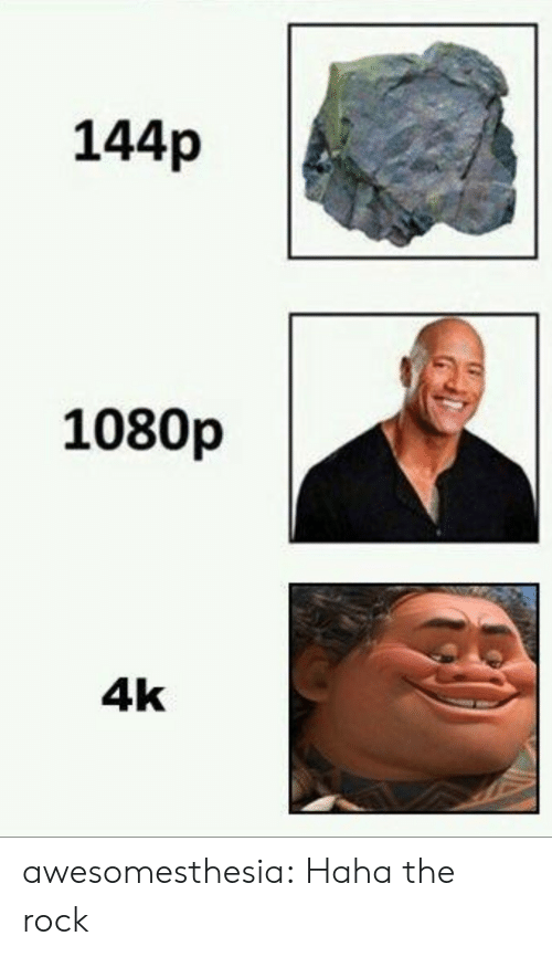 144P: 144p  1080p  4k awesomesthesia:  Haha the rock