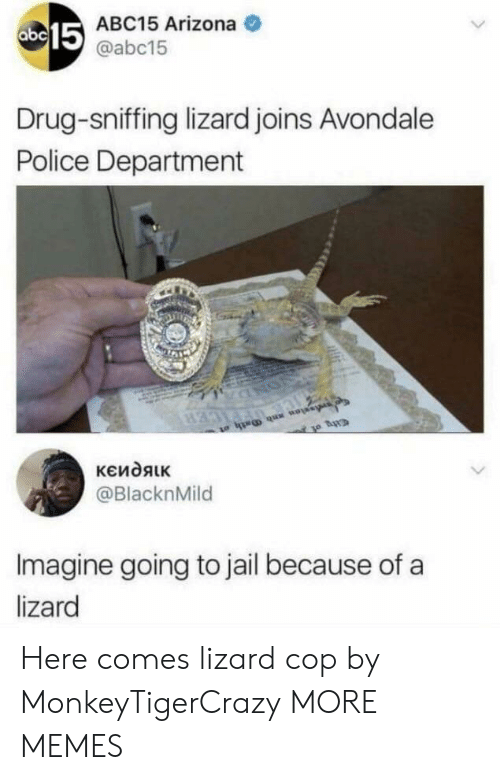 police department: 15  ABC15 Arizona  @abc15  Drug-sniffing lizard joins Avondale  Police Department  @BlacknMild  Imagine going to jail because of a  lizard Here comes lizard cop by MonkeyTigerCrazy MORE MEMES