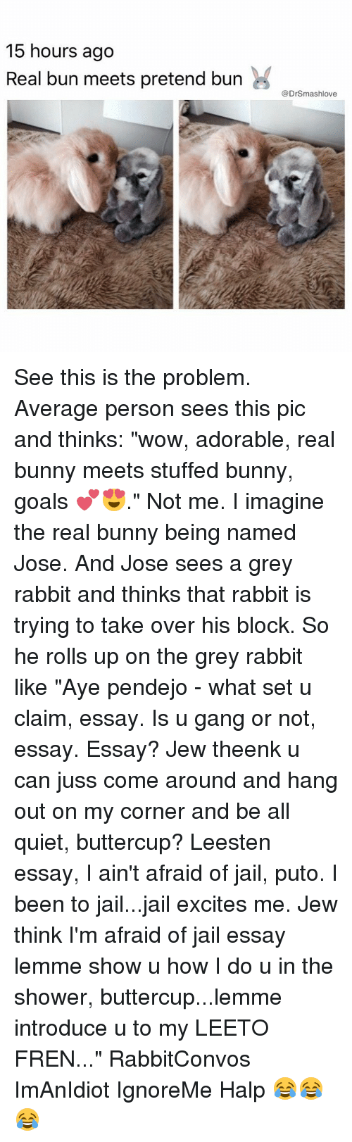 "Averagers: 15 hours ago  Real bun meets pretend burn  @DrSmashlove See this is the problem. Average person sees this pic and thinks: ""wow, adorable, real bunny meets stuffed bunny, goals 💕😍."" Not me. I imagine the real bunny being named Jose. And Jose sees a grey rabbit and thinks that rabbit is trying to take over his block. So he rolls up on the grey rabbit like ""Aye pendejo - what set u claim, essay. Is u gang or not, essay. Essay? Jew theenk u can juss come around and hang out on my corner and be all quiet, buttercup? Leesten essay, I ain't afraid of jail, puto. I been to jail...jail excites me. Jew think I'm afraid of jail essay lemme show u how I do u in the shower, buttercup...lemme introduce u to my LEETO FREN..."" RabbitConvos ImAnIdiot IgnoreMe Halp 😂😂😂"