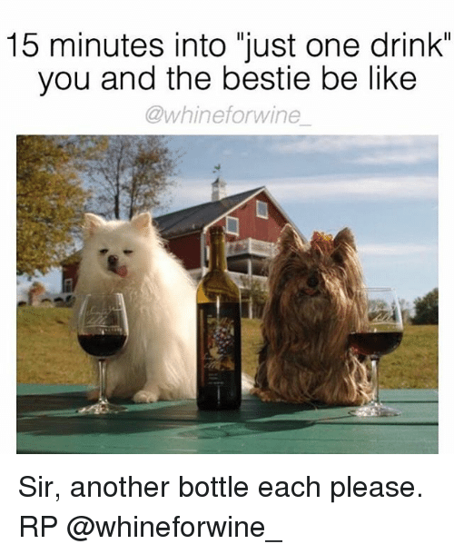 """Be Like, Memes, and Wine: 15 minutes into just one drink""""  you and the bestie be like  whinefor wine Sir, another bottle each please. RP @whineforwine_"""