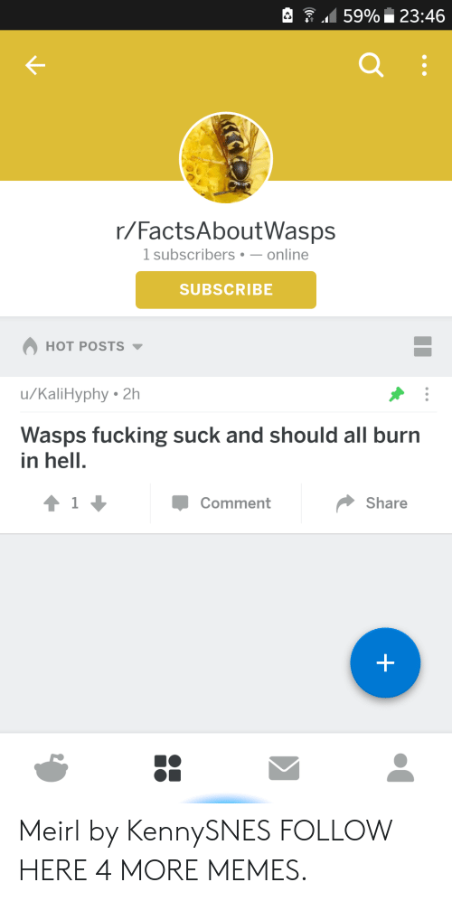 wasps: 159% 23:46  r/FactsAboutWasps  1 subscribers-online  SUBSCRIBE  HOT POSTS  u/KaliHyphy 2h  Wasps fucking suck and should all burn  in hell.  Comment  Share Meirl by KennySNES FOLLOW HERE 4 MORE MEMES.