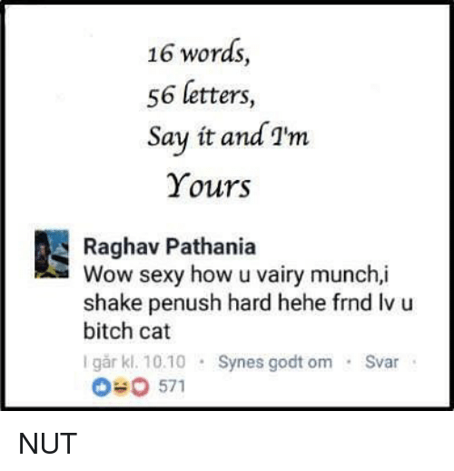 Sexyness: 16 words,  56 letters,  Say it and I'm  Yours  Raghav Pathania  Wow sexy how u vairy munch,i  shake penush hard hehe frnd Iv u  bitch cat  I går kl. 10.0 Synes godt om Svar NUT
